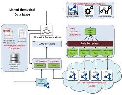 Linked Biomedical Dataspace