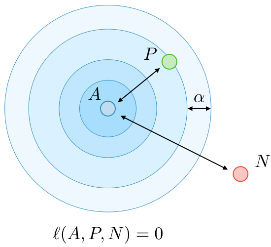 The triplet lossℓℓis a loss function computed on the embedding representation of a triplet of imagesAA(anchor),PP(positive) andNN(negative).